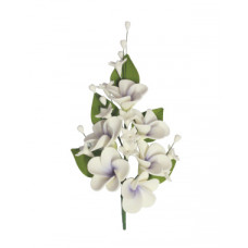 Lilac Medium Frangipani Spray